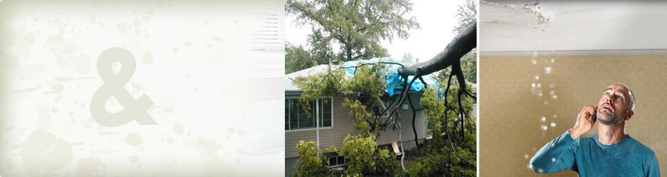 About Fire Sprinkler Heads 171 Asset Maintenance Australia